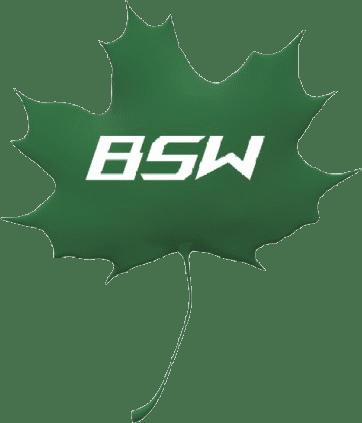 Logo BSW