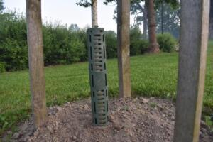 ochraniacz drzewa